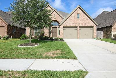 Pearland Single Family Home For Sale: 2908 Oakmist Ridge Lane