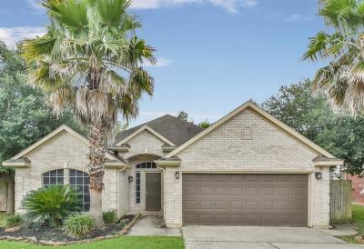 Cape Conroe, Cape Conroe 01, Cape Conroe 02 Single Family Home For Sale: 10519 Scenic Drive