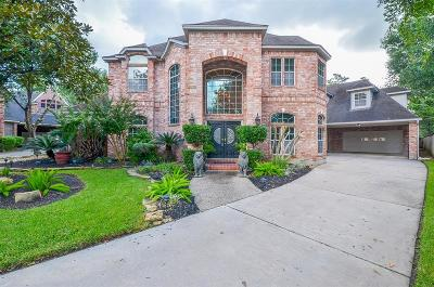 Houston Single Family Home For Sale: 7003 Centre Grove Drive