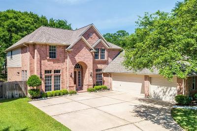 Katy Single Family Home For Sale: 22702 Bloomridge Circle