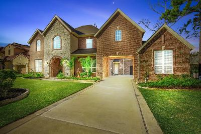 The Woodlands Single Family Home For Sale: 27 N Curly Willow Circle