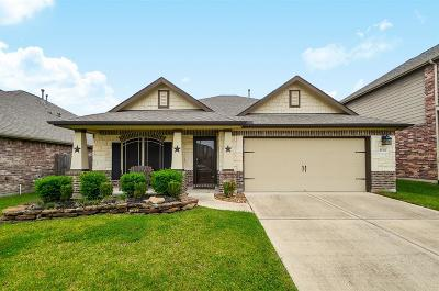 Porter Single Family Home For Sale: 21319 Lily Springs Drive