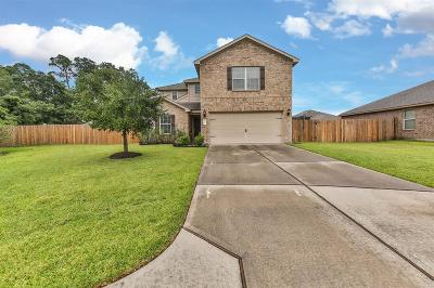Conroe Single Family Home For Sale: 10209 Red Fern Court