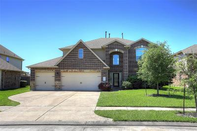 Rosharon Single Family Home For Sale: 2318 Copper Fields Drive