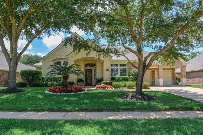 Sugar Land Single Family Home For Sale: 2123 Starlite Field Drive