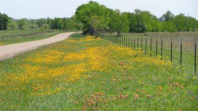 Cat Spring TX Farm & Ranch For Sale: $266,000