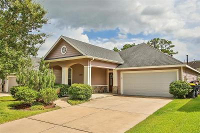 Tomball Single Family Home For Sale: 12711 Portales Pointe Lane