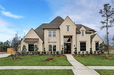 Spring Single Family Home For Sale: 31707 E Vista Lake Lane