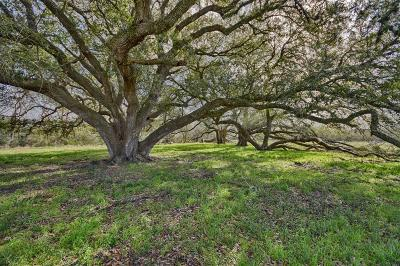 Weimar Residential Lots & Land Pending: Tract 4 Fm 2434