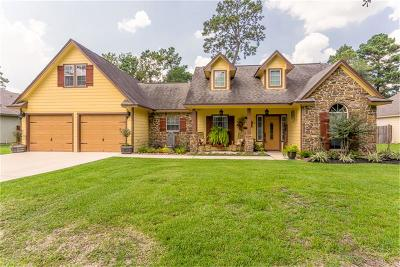 Magnolia Single Family Home For Sale: 519 Weisinger Drive