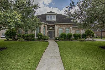 Friendswood Single Family Home For Sale: 301 Falcon Lake Drive