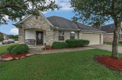 Pearland Single Family Home For Sale: 3701 Eaglet Trail