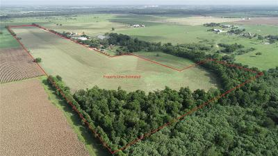 Austin County Farm & Ranch For Sale: 1956 Mixville Road