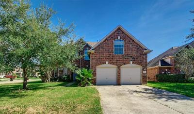 Houston Single Family Home For Sale: 8303 Indigo Villa Lane