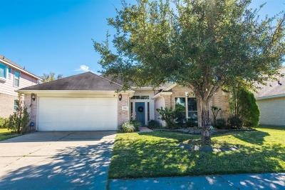 Fort Bend County Single Family Home For Sale: 17419 Chestnut Trail