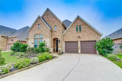 Sugar Land Single Family Home For Sale: 5102 Anthony Springs Ln