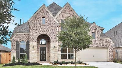 Pearland Single Family Home For Sale: 13618 Thunder Stone Lane