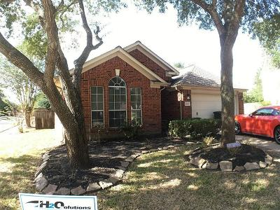 Katy Single Family Home For Sale: 20810 Townsgate Court