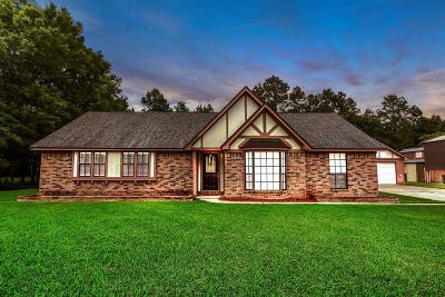 Conroe Single Family Home For Sale: 12051 Sleepy Hollow