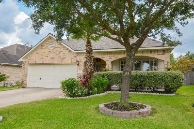 Katy Single Family Home For Sale: 6127 Settlers Village Drive