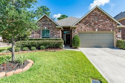 Porter Single Family Home For Sale: 21335 Russell Chase Drive