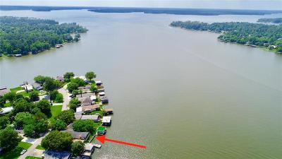 Willis Single Family Home For Sale: 14216 Shadow Bay Drive