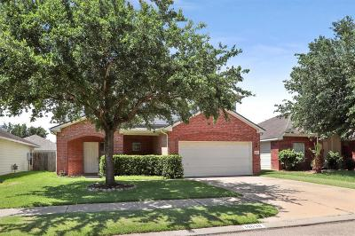 Katy Single Family Home For Sale: 19638 Adelaide Meadows Court