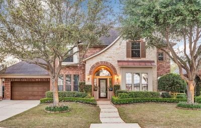 Houston Single Family Home For Sale: 3706 Louvre Lane