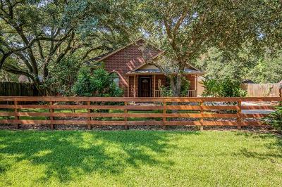 League City Single Family Home For Sale: 413 Waco Avenue