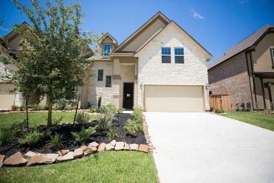 Conroe Condo/Townhouse For Sale: 127 Skybranch Drive