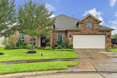 Pearland Single Family Home For Sale: 2302 Harbor Chase Drive