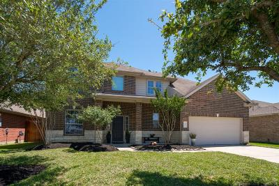 Dickinson Single Family Home For Sale: 6603 Blue Hollow Lane