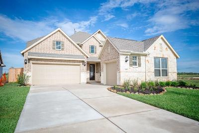 Lakes Of Savannah Single Family Home For Sale: 4836 Peppermill Ridge Lane