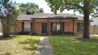 Houston Single Family Home For Sale: 12519 Hunting Brook Drive
