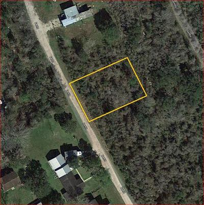 Brazoria Residential Lots & Land For Sale: Lot 10 Sexto