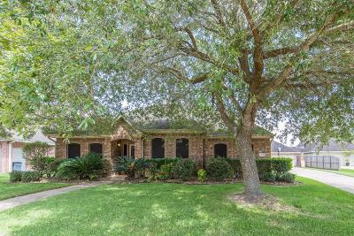 Friendswood Single Family Home For Sale: 2833 Trevino Court