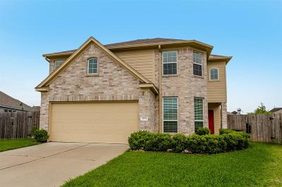 Rosenberg Single Family Home For Sale: 3035 Sage Grouse Court