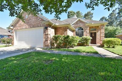 Harris County Single Family Home For Sale: 9210 Rolling Rapids Road