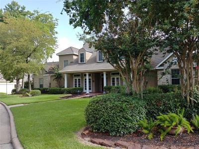 Houston Single Family Home For Sale: 14 Villa Bend Drive