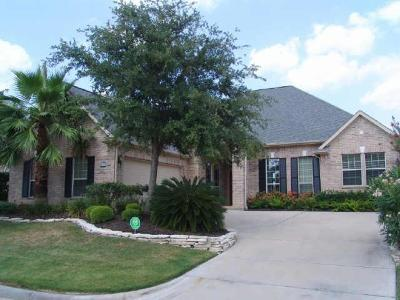 Houston Single Family Home For Sale: 3415 Louvre Lane