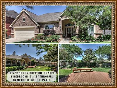 Houston Single Family Home For Sale: 14602 Summerwood Lakes Drive