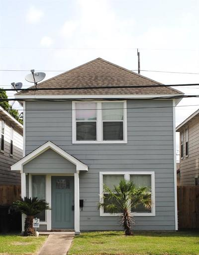 Houston Single Family Home For Sale: 1104 Cleveland Street