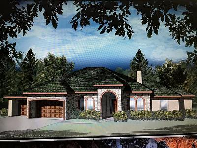 Spring Single Family Home For Sale: 7614 Noah Lane