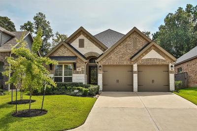 Montgomery Single Family Home For Sale: 142 Kinnerly Peak Place
