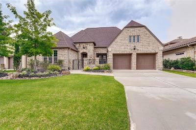 Tomball Single Family Home For Sale: 27 Lake Reverie Place