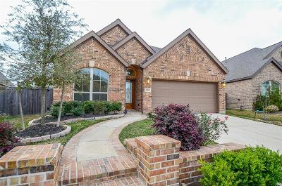 Single Family Home For Sale: 16755 Highland Country Drive