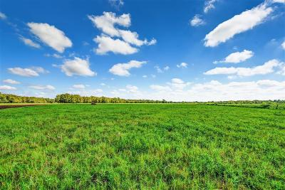Fort Bend County Farm & Ranch For Sale: 2702 Guyler Road
