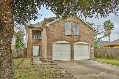Houston Single Family Home For Sale: 12023 Dogwood Mountain Road