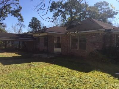 Houston Single Family Home For Sale: 3218 Sadler Street