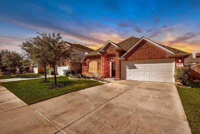 Tomball Single Family Home For Sale: 8306 Sierra Dawn Drive